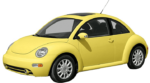 Beetle 12